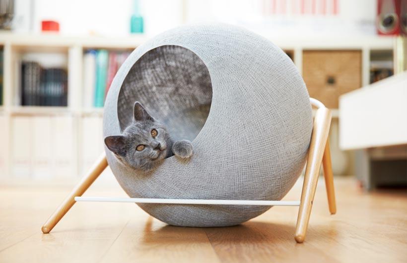 cuccia di design per gatto