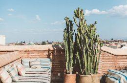 Ambiente esterno Marocchino